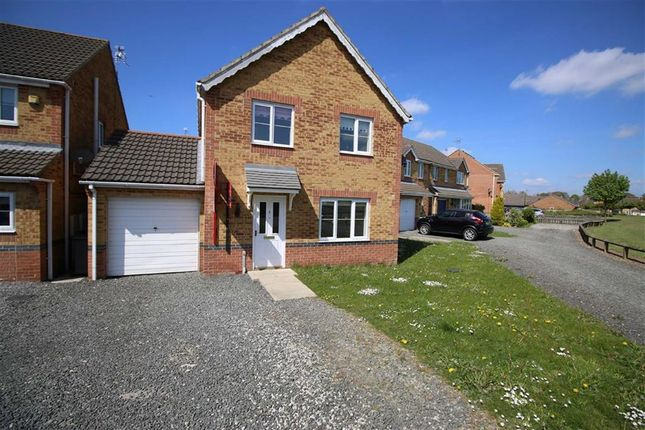 Thumbnail Detached house to rent in Foxglove Way, Shildon