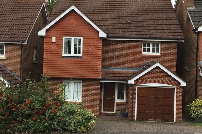 Thumbnail Detached house to rent in Five Fields Close, Bushey, Watford, Hertfordshire