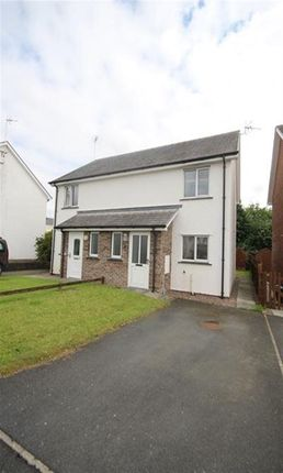 Thumbnail Property to rent in Dol Helyg, Penrhyncoch, Aberystwyth
