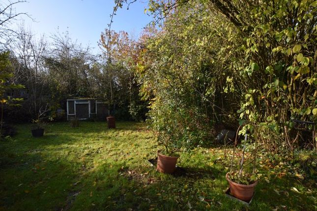 Photo 9 of With 4.58 Acres - Dunsells Lane, Ropley, Hampshire SO24