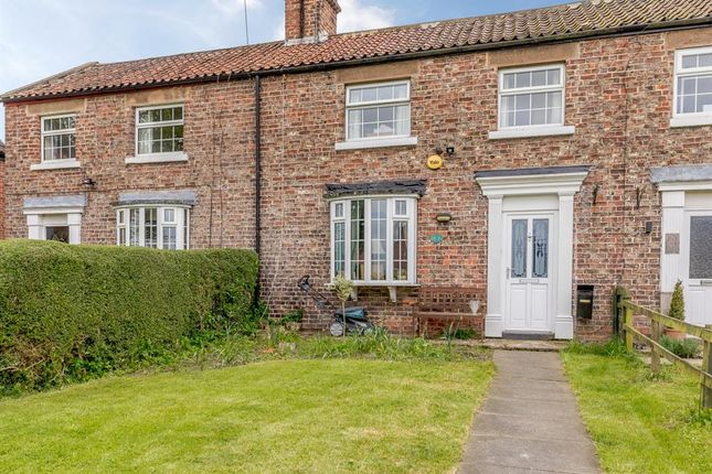 Thumbnail Terraced house for sale in The Terrace, Oak Road, Cowthorpe