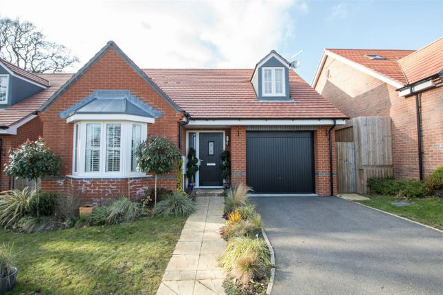 Thumbnail Detached bungalow for sale in Vaughan Close, Hartley Wintney, Hook