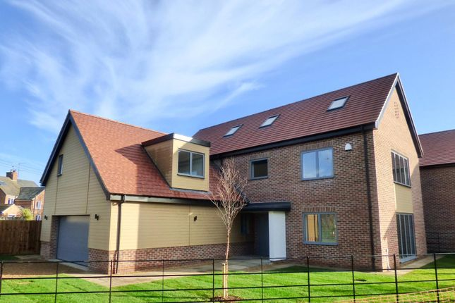 Thumbnail Detached house for sale in Riverside, Deeping Gate, Peterborough