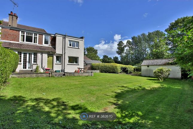 Thumbnail Terraced house to rent in Hermitage Avenue, Aberdeen