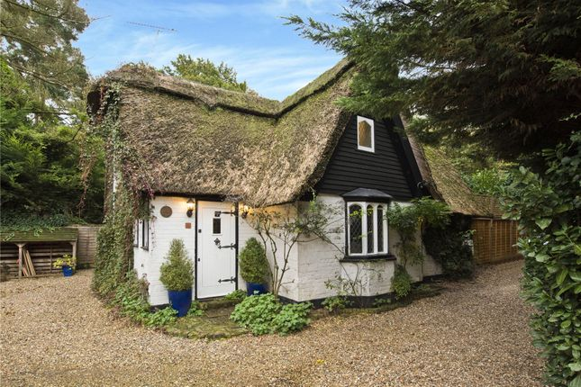 Thumbnail Detached house for sale in Portsmouth Road, Esher, Surrey