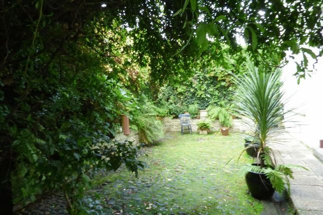 Garden Area of Drake Road, Tavistock PL19