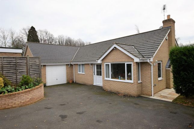 Thumbnail Bungalow for sale in The Dell, Oakham