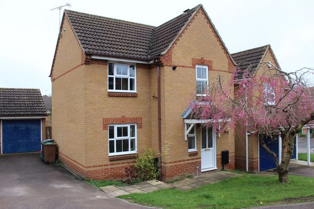 Thumbnail Property to rent in Elder Drive, Daventry