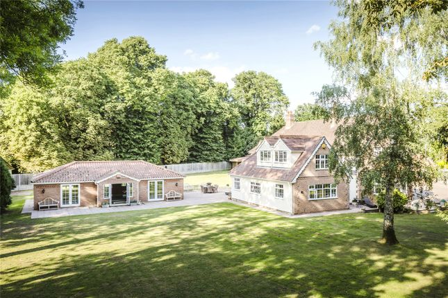 Thumbnail Detached house for sale in Westland Green, Little Hadham, Ware, Hertfordshire
