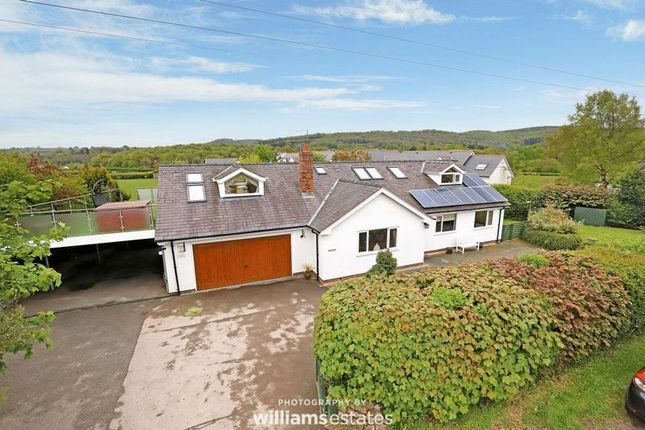 Thumbnail Detached house for sale in Tafarn-Y-Gelyn, Llanferres, Mold