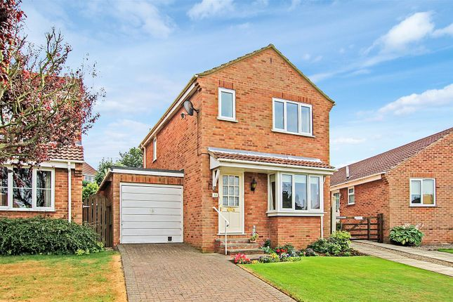 Thumbnail Detached house to rent in Sycamore Close, Slingsby, York