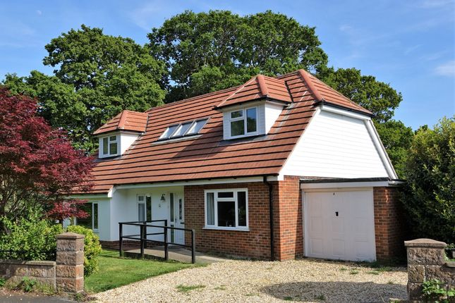 Thumbnail Detached house for sale in Long Lane Close, Holbury, Southampton