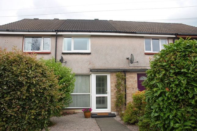 Thumbnail Terraced house for sale in 14 Rowanbank Crescent, Dumfries