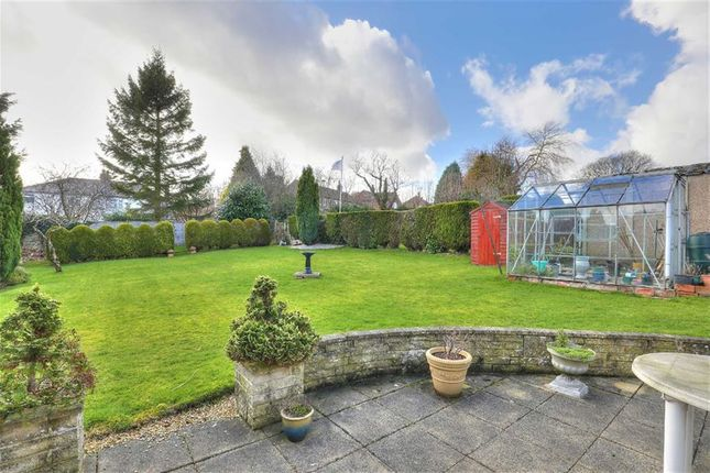 Thumbnail Bungalow for sale in 39, Bushey Wood Road, Dore