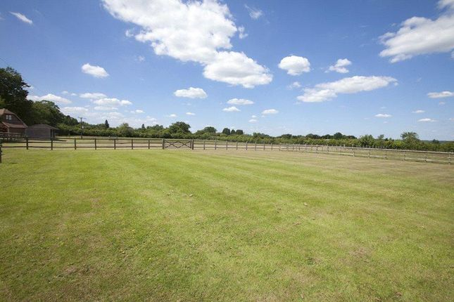 Thumbnail Country house for sale in Country House, Greater London/South Herts Border