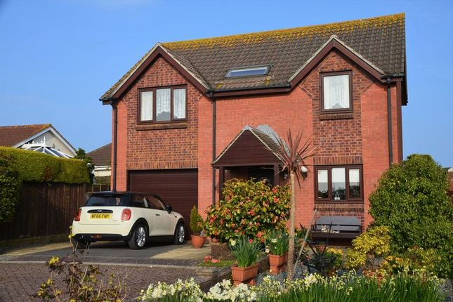 Thumbnail Property for sale in Anchorage Close, Brixham
