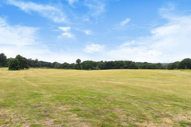 External View of Wisley Common, Surrey GU23