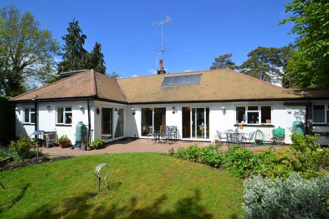 Thumbnail Detached bungalow for sale in The Avenue, Radlett