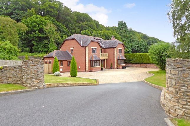 Thumbnail Detached house for sale in Belmont Road, Bangor