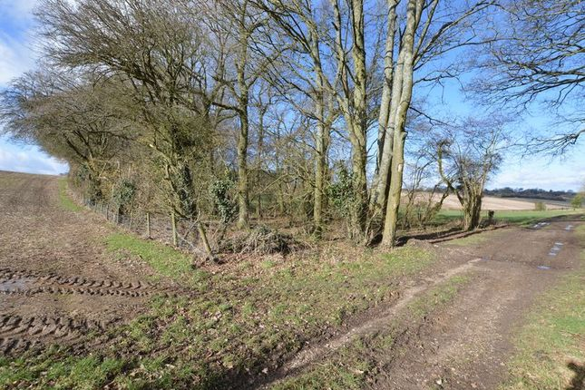 Thumbnail Land for sale in Tinkers Lane, Wivelrod, Alton, Hampshire