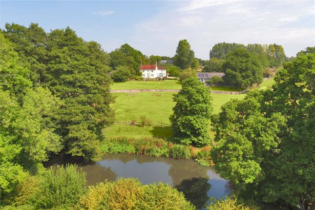 Thumbnail Property for sale in Courtlands, Nutley, Uckfield, East Sussex