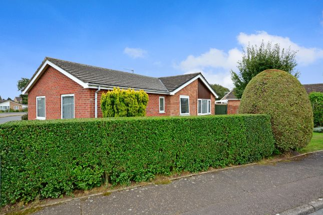 Thumbnail Detached bungalow for sale in Roydon, Diss