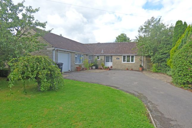 Thumbnail Detached bungalow for sale in Thorndean, Charlton Musgrove, Wincanton