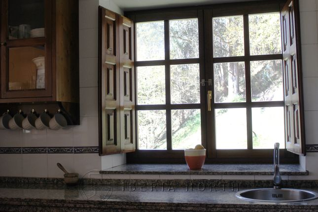 Kitchen View To Forest