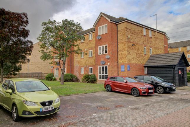 Rear Elevation & Parking