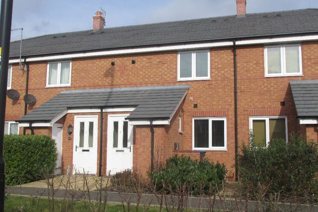 Thumbnail Terraced house to rent in Terry Road, Coventry