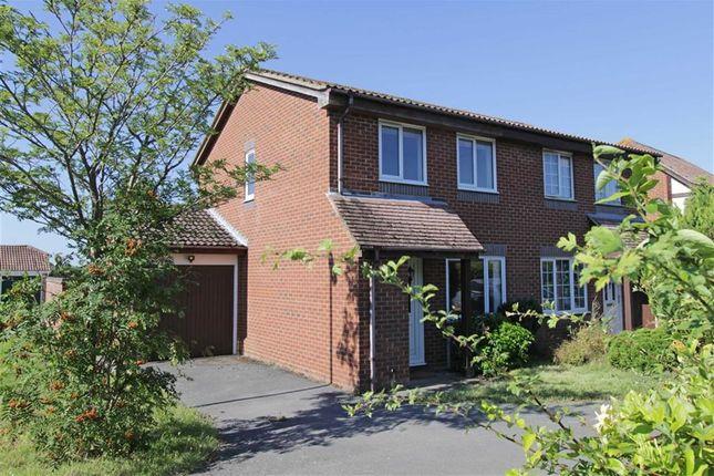 Thumbnail Property for sale in Doe Copse Way, New Milton