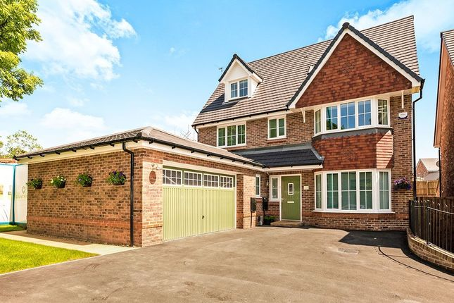 Thumbnail Detached house for sale in Broadmeadow, Gee Cross, Hyde