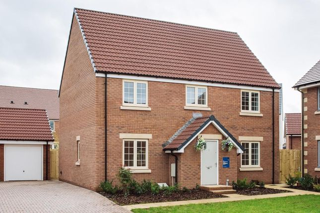 """Thumbnail Property for sale in """"The Calder"""" at Wand Road, Wells"""
