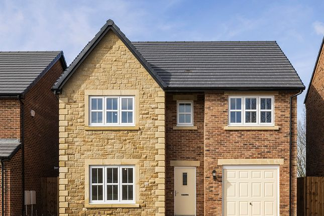 """Thumbnail Detached house for sale in """"Hewson"""" at Heron Drive, Fulwood, Preston"""