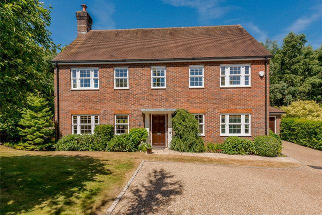 Thumbnail Detached house for sale in Hurst Park, Midhurst, West Sussex