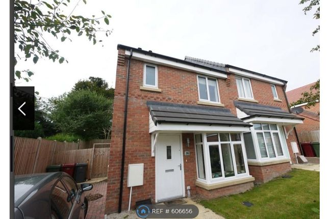 Thumbnail Semi-detached house to rent in Moorgate Avenue, New Houghton, Mansfield