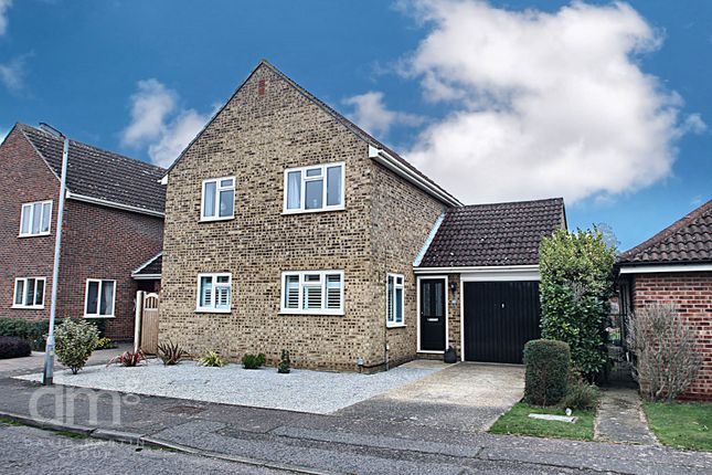 Thumbnail Detached house for sale in President Road, Colchester, Essex