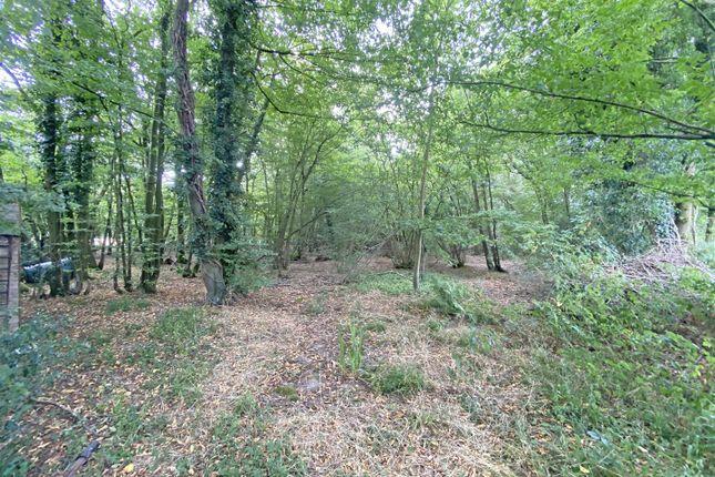 Land1A of Hempstead Lane, Hailsham BN27
