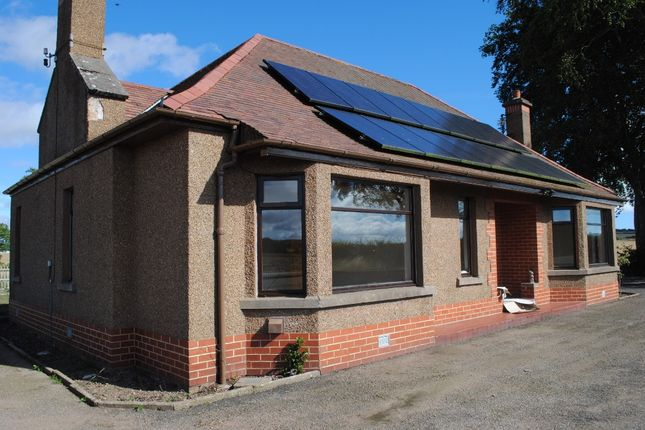 Thumbnail Bungalow to rent in Kinnell, Friockheim, Arbroath, Angus