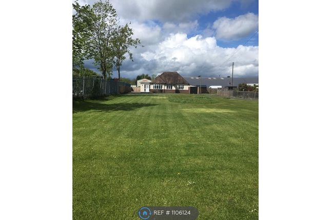 3 bed bungalow to rent in Severn Lane, Welshpool SY21