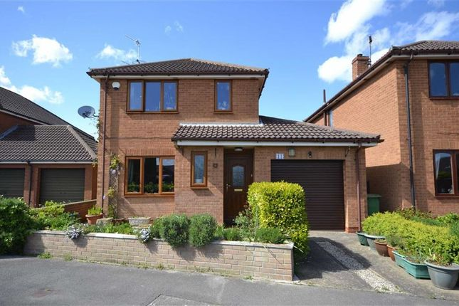 Thumbnail Detached house to rent in Tansley Lane, Hornsea, East Yorkshire
