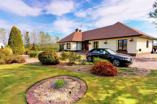 Thumbnail Detached house for sale in 419 Foreglen Road, Dungiven