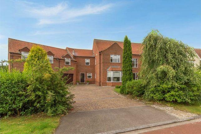 Thumbnail Detached house for sale in Gunners Vale, Wynyard, Billingham, Durham