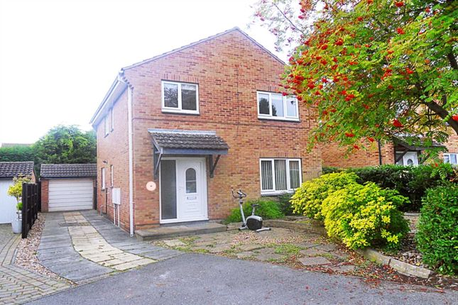 Thumbnail Detached house to rent in Magnolia Court, Beeston, Nottingham