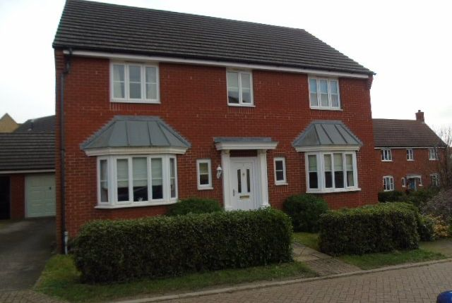 Thumbnail Detached house to rent in Plover Close, Stowmarket