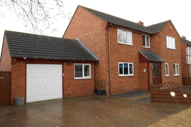 Thumbnail Detached house to rent in Lincoln Road, Werrington, Peterborough