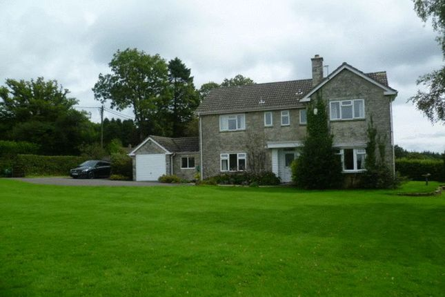 Thumbnail Semi-detached house to rent in Offwell, Honiton