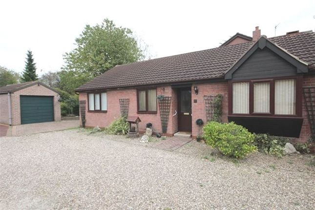 Thumbnail Bungalow to rent in Hawke Close, Norton, Doncaster