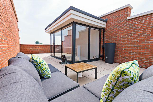 Roof Terrace... of Primrose Terrace, St. Michaels Street, Shrewsbury SY1