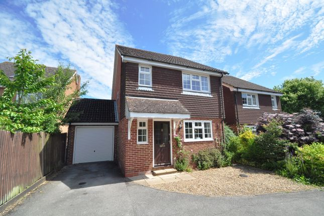 Thumbnail Detached house to rent in Cranesfield, Sherborne St. John, Basingstoke